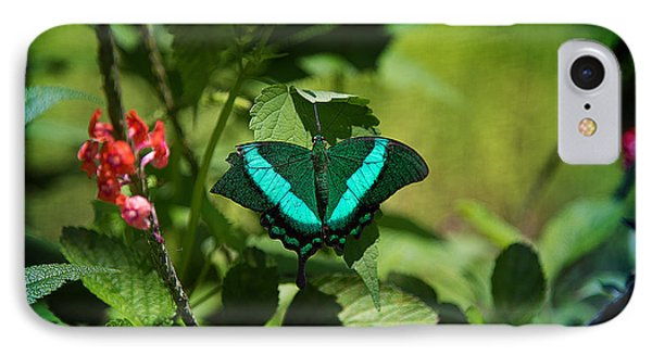 In A Butterfly World IPhone Case by Milena Ilieva