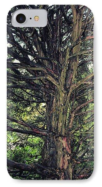 In A Dark Dark Wood IPhone Case by Martin Newman