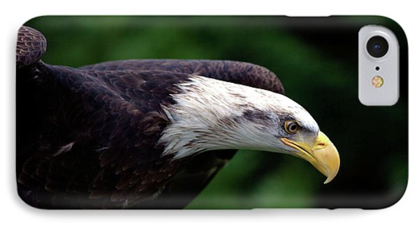 In For The Kill IPhone Case by Stephen Melia