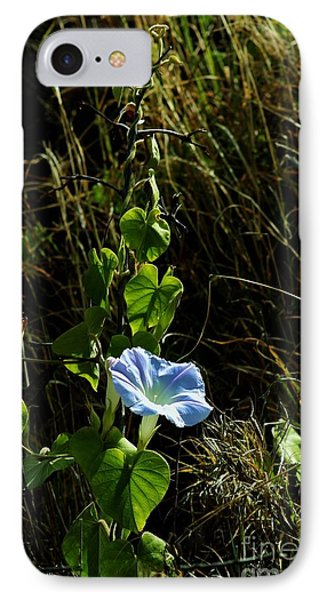 IPhone Case featuring the photograph In Praise Of Morning Light by Craig Wood