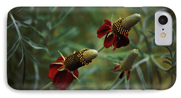IPhone Case featuring the photograph In Rousseaus Garden by Douglas MooreZart