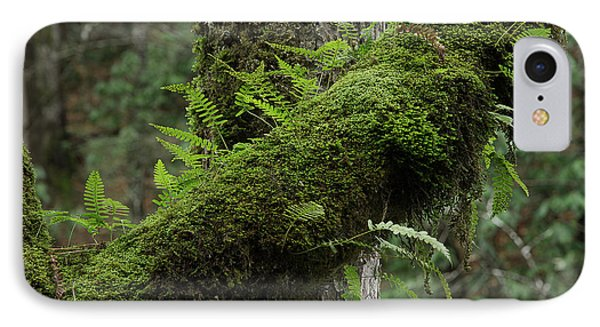 IPhone Case featuring the photograph In The Cool Of The Forest by Mike Eingle