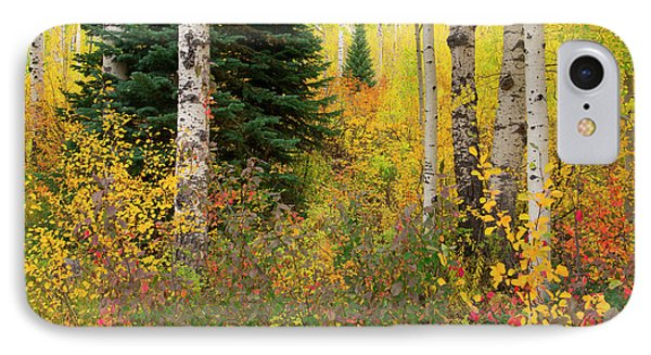 IPhone Case featuring the photograph In The Depths Of Autumn Woods by Tim Reaves