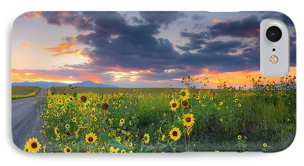 IPhone Case featuring the photograph In The Evening Light by Tim Reaves