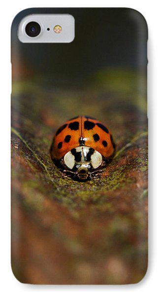 In The Groove IPhone Case by Doris Potter
