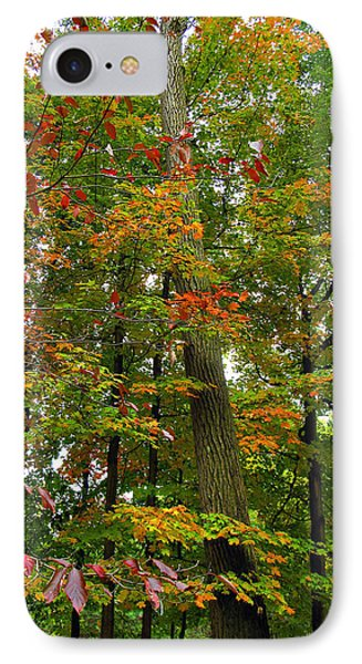 IPhone Case featuring the photograph In The Height Of Autumn by Joan  Minchak