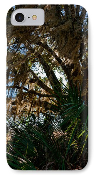 In The Shade Of A Florida Oak Phone Case by Christopher Holmes
