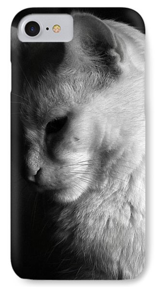 In The Shadows Phone Case by Bob Orsillo