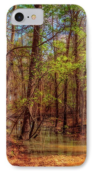 In The Swamp IPhone Case by Barry Jones