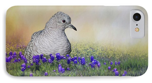 Inca Dove  IPhone Case by Bonnie Barry
