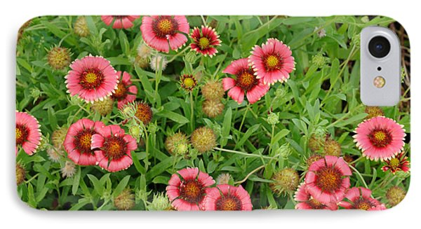 IPhone Case featuring the photograph Indian Blanket Flowers by Bradford Martin