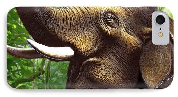 Indian Elephant 1 IPhone Case by Jerry LoFaro