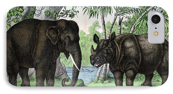 Indian Elephant And Rhinoceros IPhone Case by Biodiversity Heritage Library