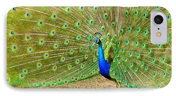 Indian Peacock IPhone Case by Dan Miller