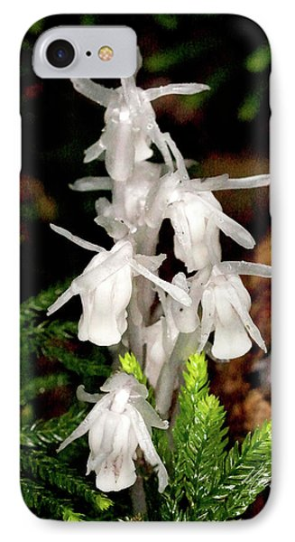 IPhone Case featuring the photograph Indian Pipes On Club Moss by Meta Gatschenberger