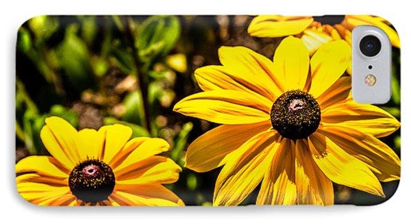 Indian Summer Gloriosa Daisy IPhone 7 Case