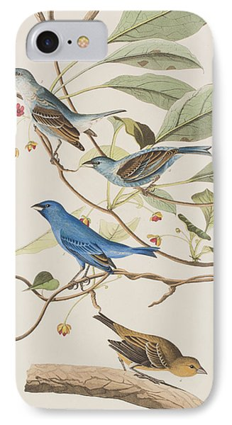 Indigo Bird IPhone 7 Case