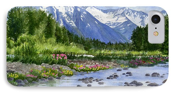 Inlet View From Glacier Creek IPhone Case by Sharon Freeman