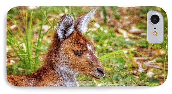 Inner Peace, Yanchep National Park IPhone Case by Dave Catley