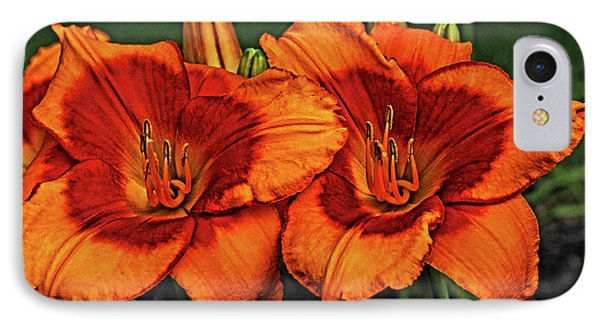 IPhone Case featuring the photograph Innocent Fire by Judy Vincent