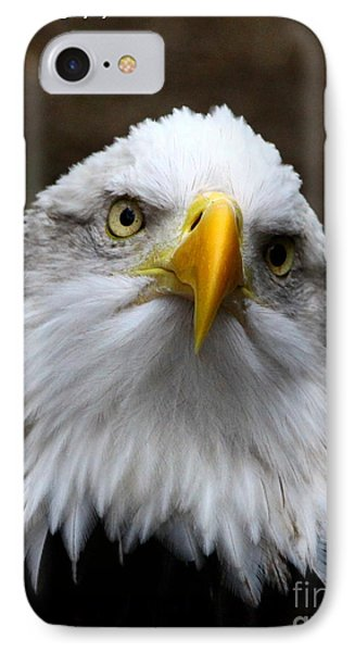 Inquisitive Eagle IPhone Case