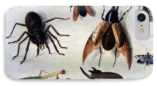 Insects, 1660 IPhone 7 Case