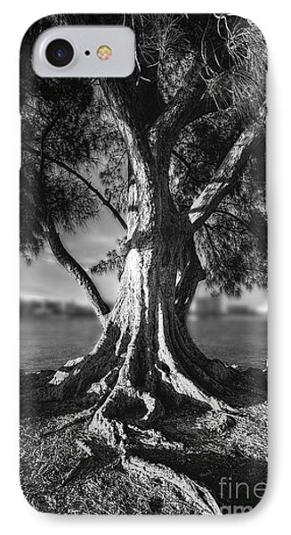 Intercoastal Pine IPhone Case by Marvin Spates