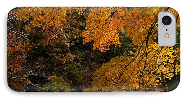 Into The Fall IPhone Case by Michael McGowan