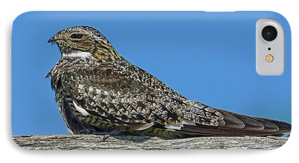 IPhone Case featuring the photograph Into The Out by Tony Beck
