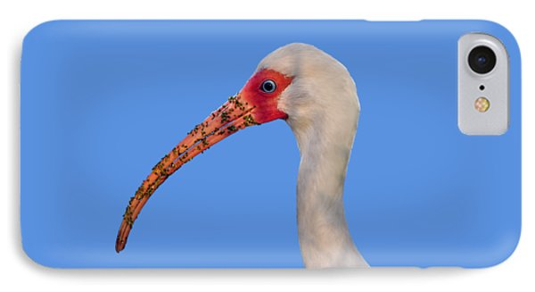 IPhone Case featuring the photograph Intriguing Ibis .png by Al Powell Photography USA