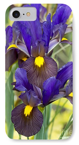 Iris Eye Of The Tiger IPhone Case