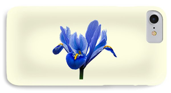 Iris Recticulata Transparent Background IPhone Case by Paul Gulliver