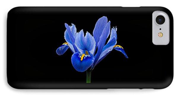 Iris Reticulata, Black Background IPhone Case