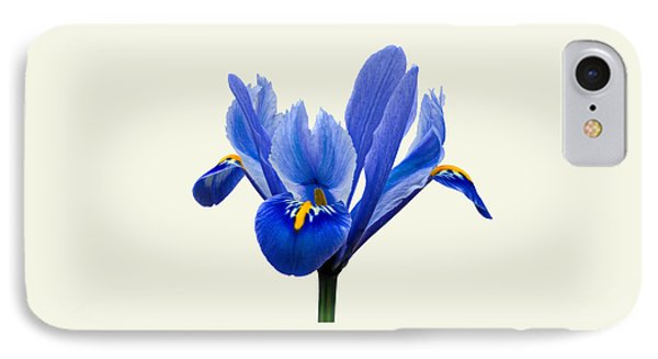 IPhone Case featuring the photograph Iris Reticulata, Cream Background by Paul Gulliver
