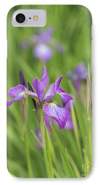 Iris Sibirica Sparkling Rose Flower IPhone Case