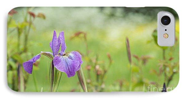 Iris Sibirica Sparkling Rose IPhone Case
