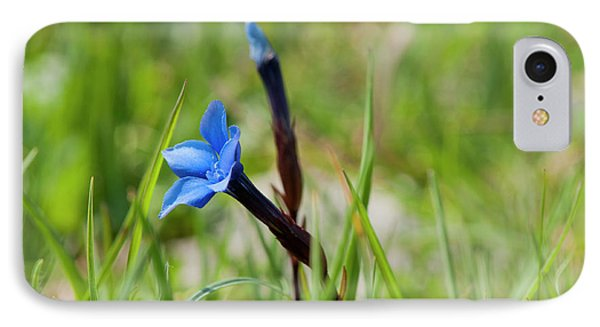 Irish Gentians IPhone Case by Rob Hemphill