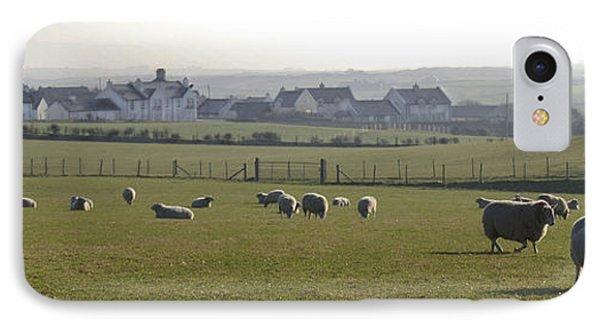 Irish Sheep Farm I IPhone Case