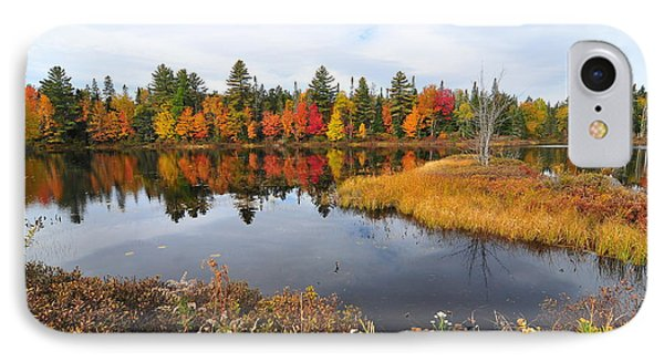 Island Brook  IPhone Case by Catherine Reusch Daley