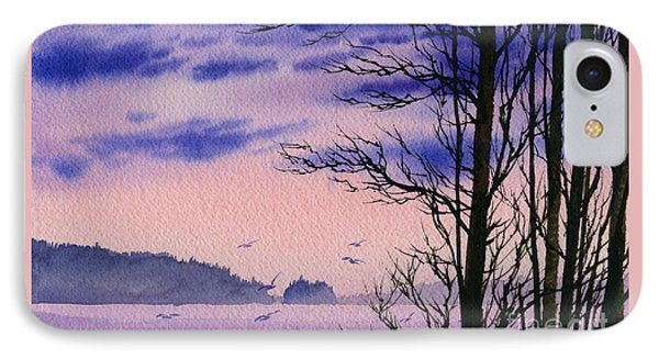 IPhone Case featuring the painting Island Point by James Williamson