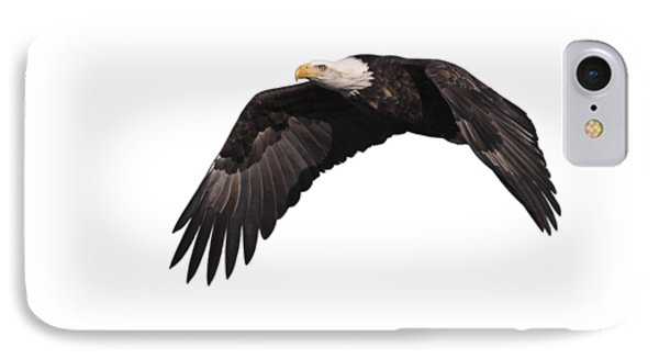 IPhone Case featuring the photograph Isolated Eagle 2017-1 by Thomas Young