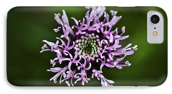 Isolated Flower IPhone Case by Jason Moynihan