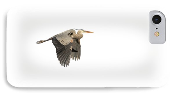 IPhone Case featuring the photograph Isolated Great Blue Heron 2015-5 by Thomas Young