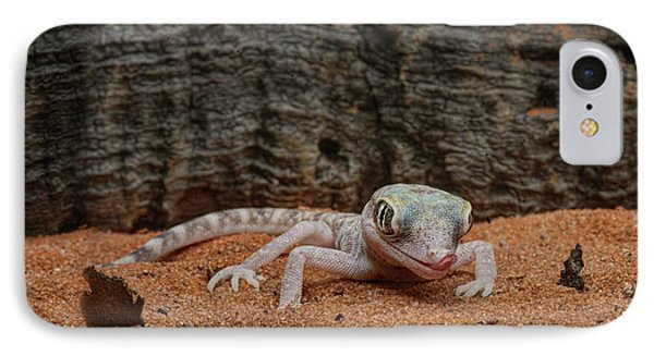 IPhone Case featuring the photograph Israeli Sand Gecko - 1 by Nikolyn McDonald