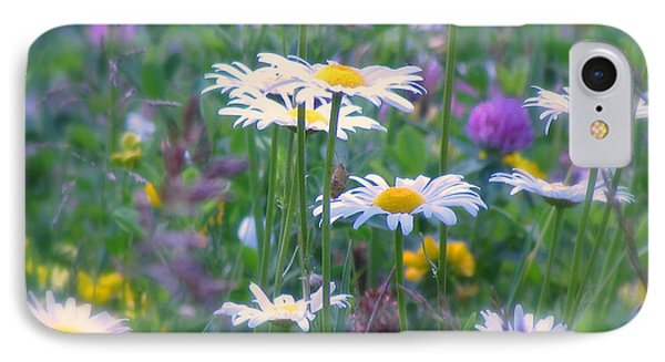 It's A Daisy Kind Of Day IPhone Case