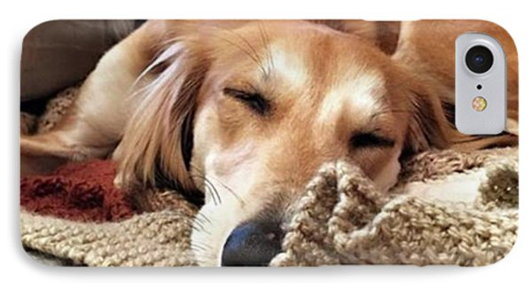 It's Been A Hard Day...  #saluki IPhone Case by John Edwards