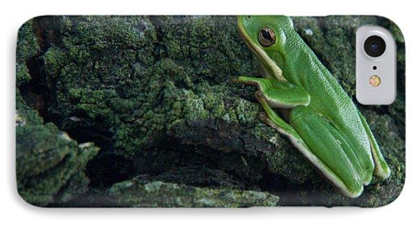 Its Hard To Be Green Phone Case by Douglas Barnett