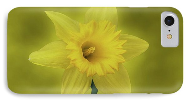 It's Spring IPhone Case by Sandy Keeton