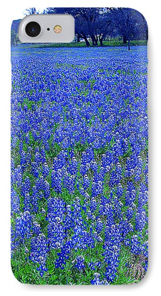 It's Spring - Texas Bluebonnets Time IPhone Case