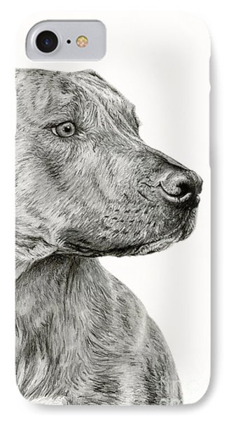Ittie Bittie Pittie IPhone Case by Sarah Batalka